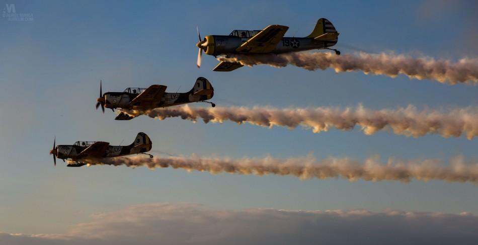 Airshow-Baneasa-22-Iunie-2014