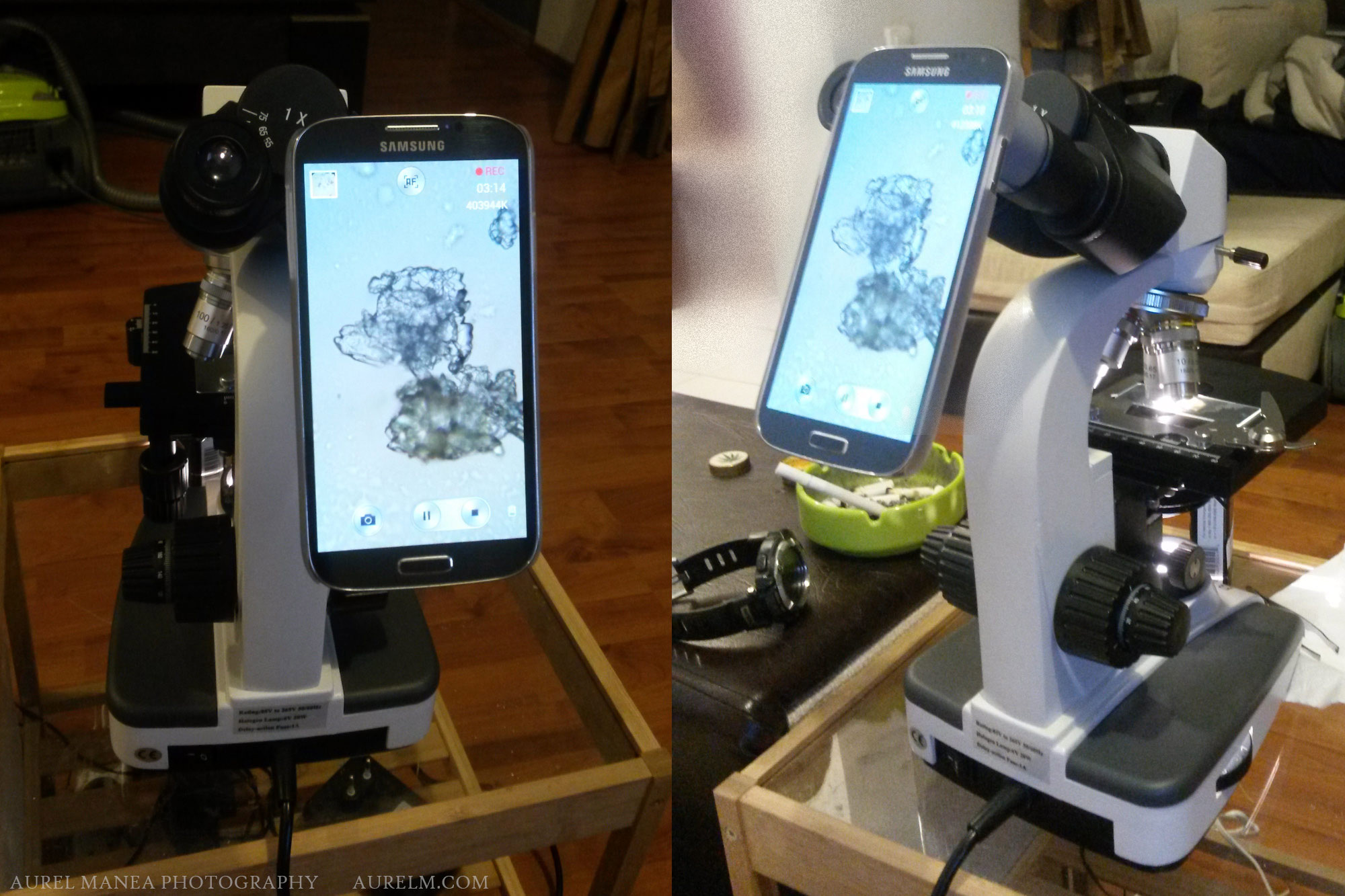 Diy Smartphone Adapter For Microscope Photography