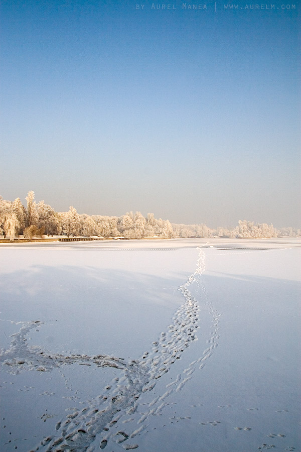 Herastrau-park-in-winter-01