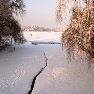 Herastrau-park-in-winter-02