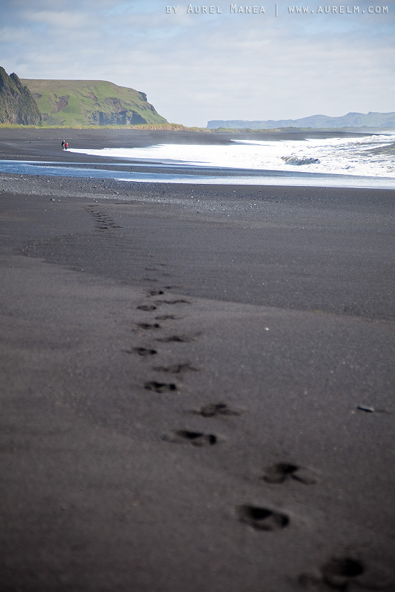 Iceland-black-beach-in-Vik-03