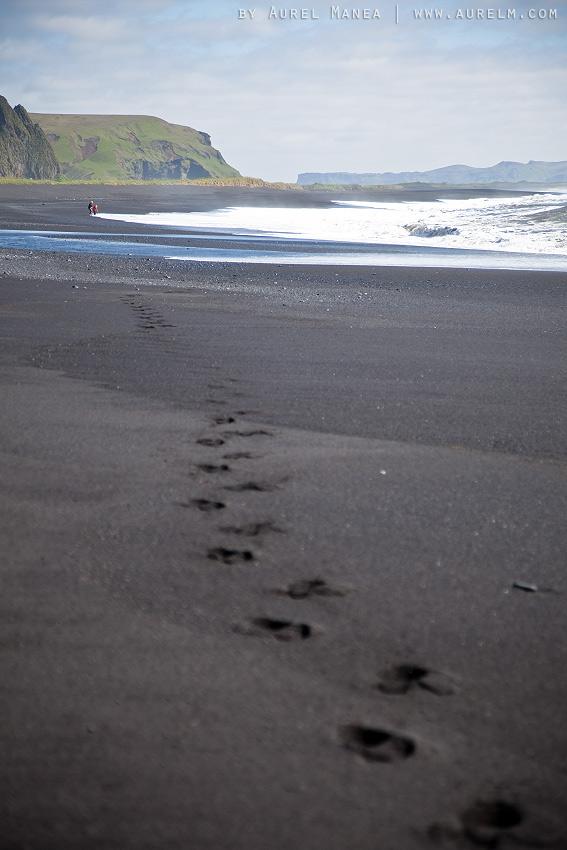 Iceland-black-beach-in-Vik-03
