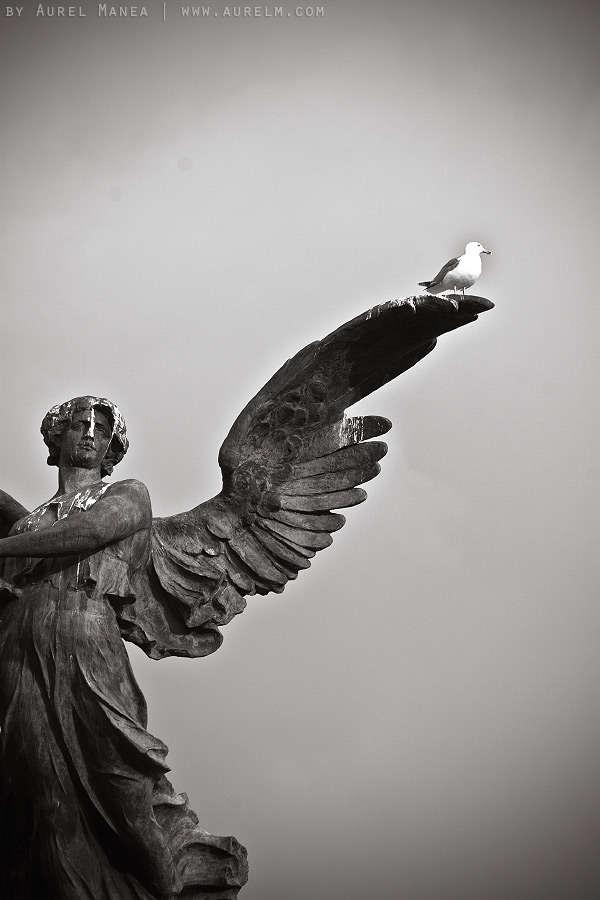 Rome-statue-01