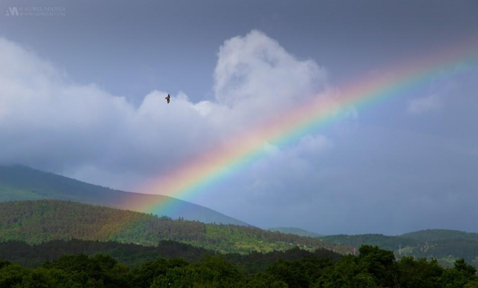 Skocjan-rainbow