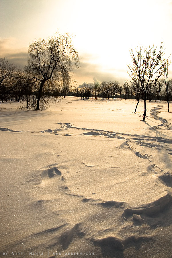 Tineretului-park-in-winter-01