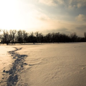 Tineretului-park-in-winter-02