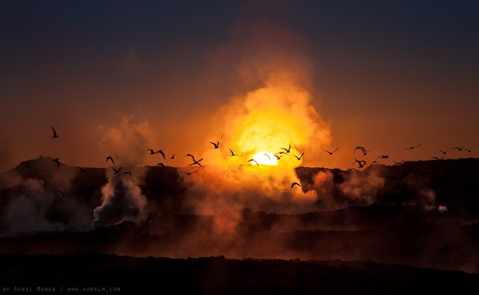 volcanic sunet steam Iceland fire birds 