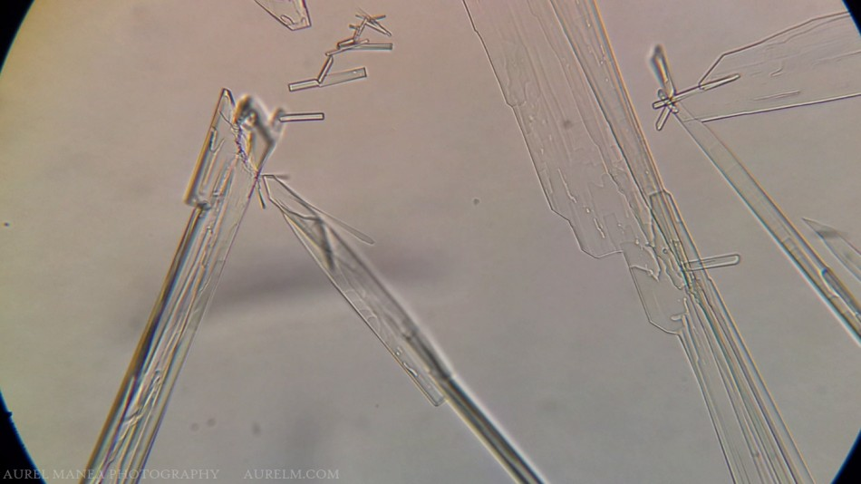 ketamine-crystals-under-microscope-with-DIY-adapter-01