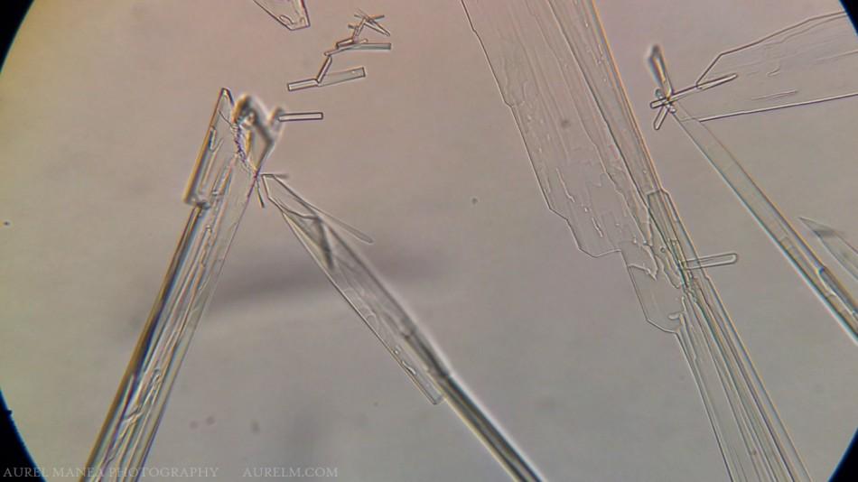 ketamine-crystals-under-microscope-with-DIY-adapter-01