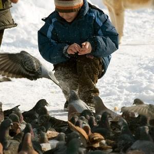 kid-feeding-pigeons-in-parcul-tineretului