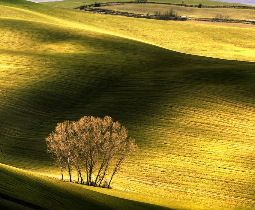 tuscany-minimal-landscape