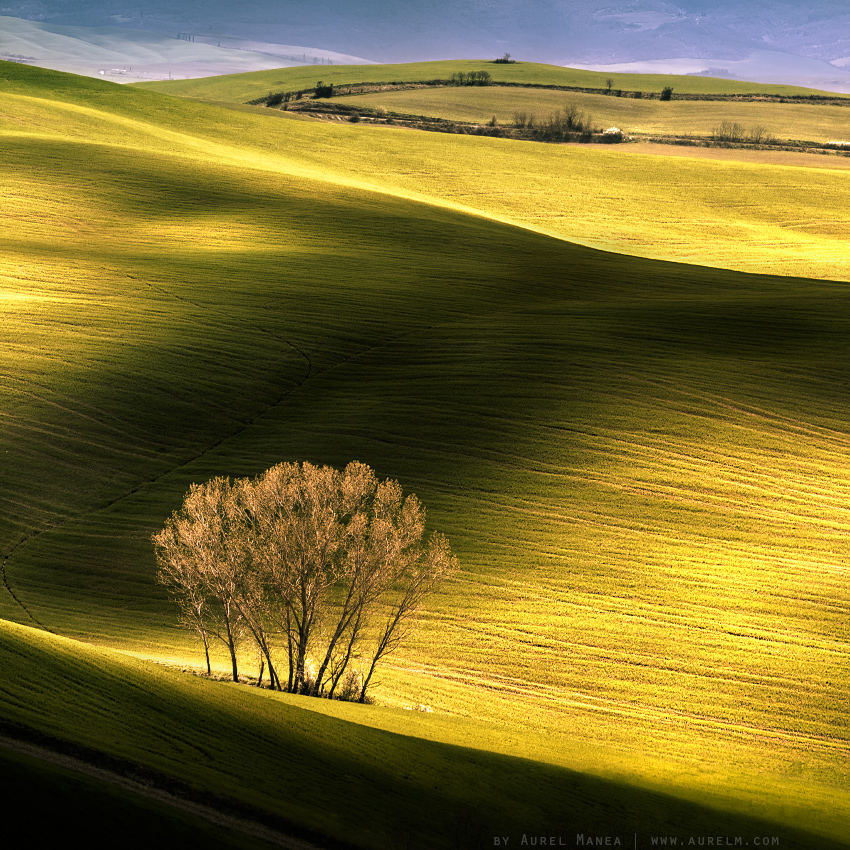 Tuscany shadow light Italy hills green 
