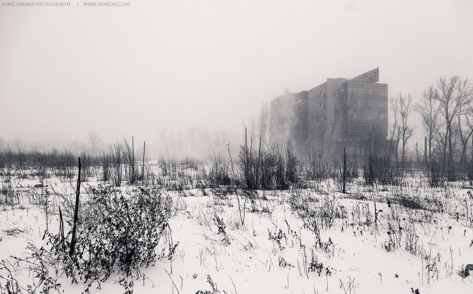 viscol-Bucuresti-25-ianuarie-2014-09