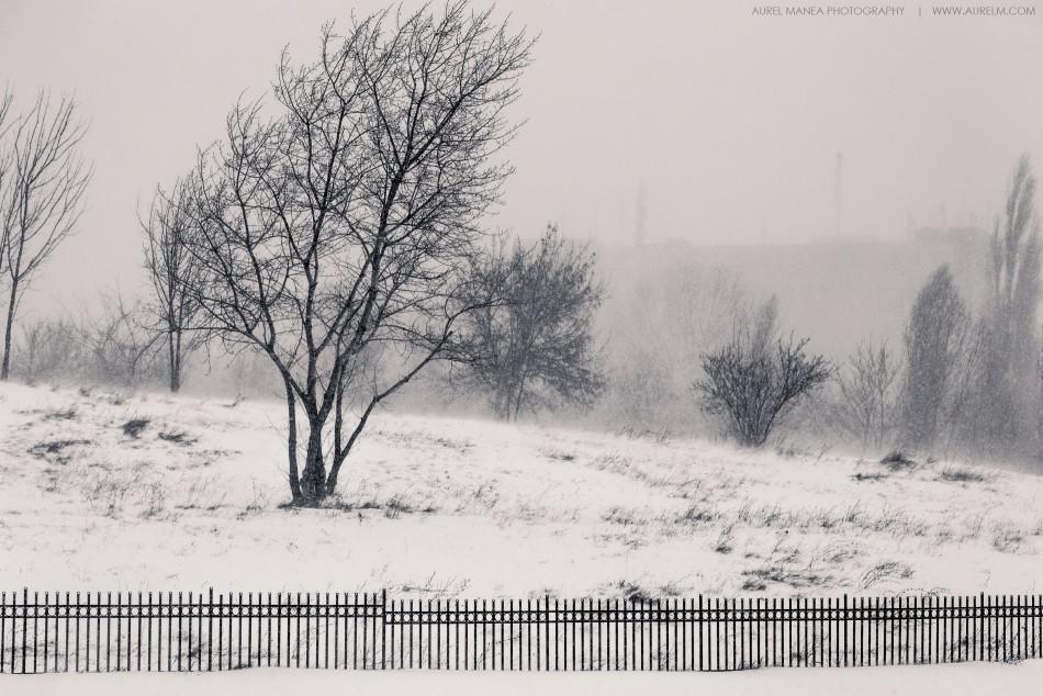 viscol-Bucuresti-25-ianuarie-2014-16