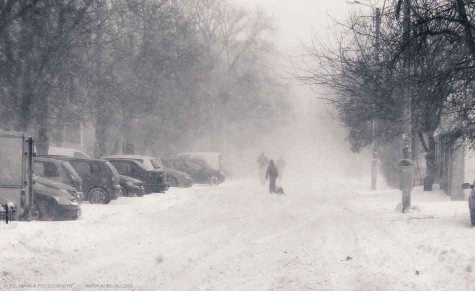 viscol-Bucuresti-25-ianuarie-2014
