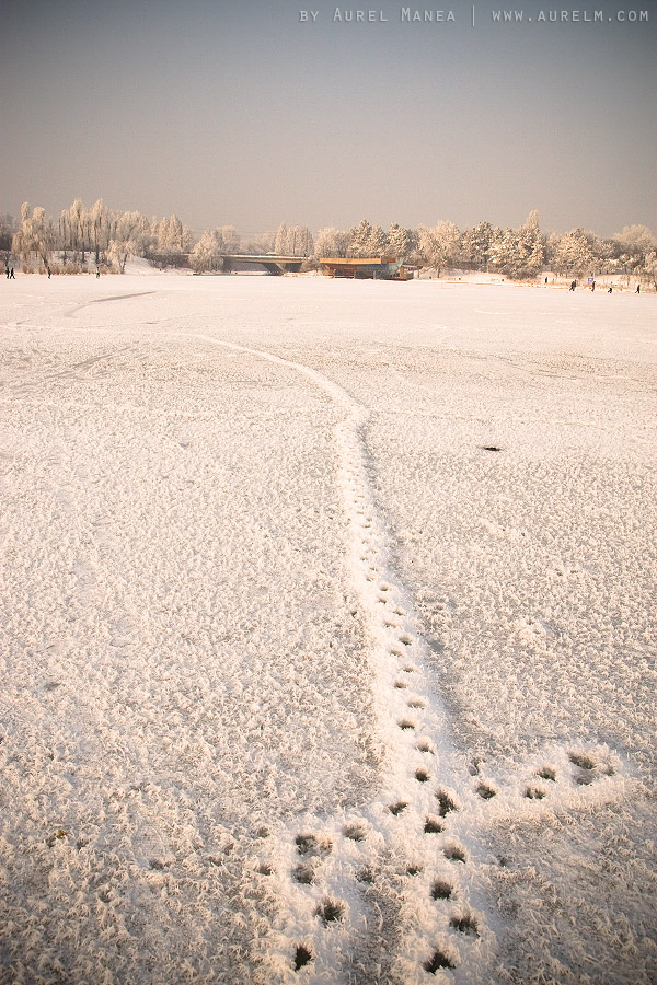 winter-in-Titan-park-Bucharest-02